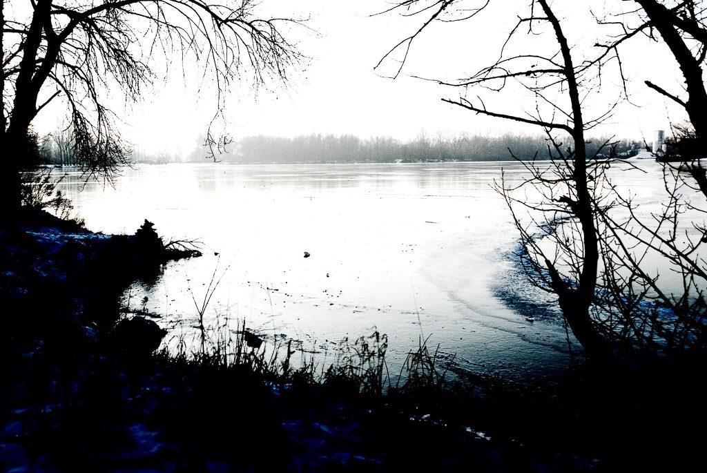 Die dunklen Tage. Der Silbersee im Winter bei Bobenheim-Roxheim, 2009